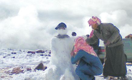 اللوز ارتدى الثلج